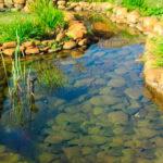 Искусственный водоём с камнями