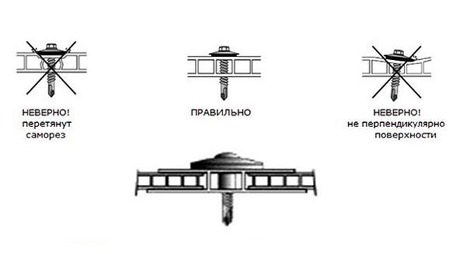 Правильное крепление поликарбоната с помощью саморезов