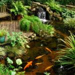 Пруд с рыбками, водопадом и уютным местом для отдыха