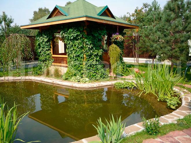 Зелёная беседка у пруда